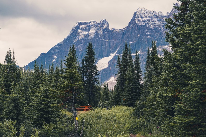 Backpacking Tonquin Valley in Jasper National Park