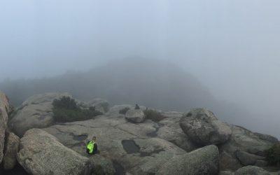 Best Hikes Near Washington D.C.