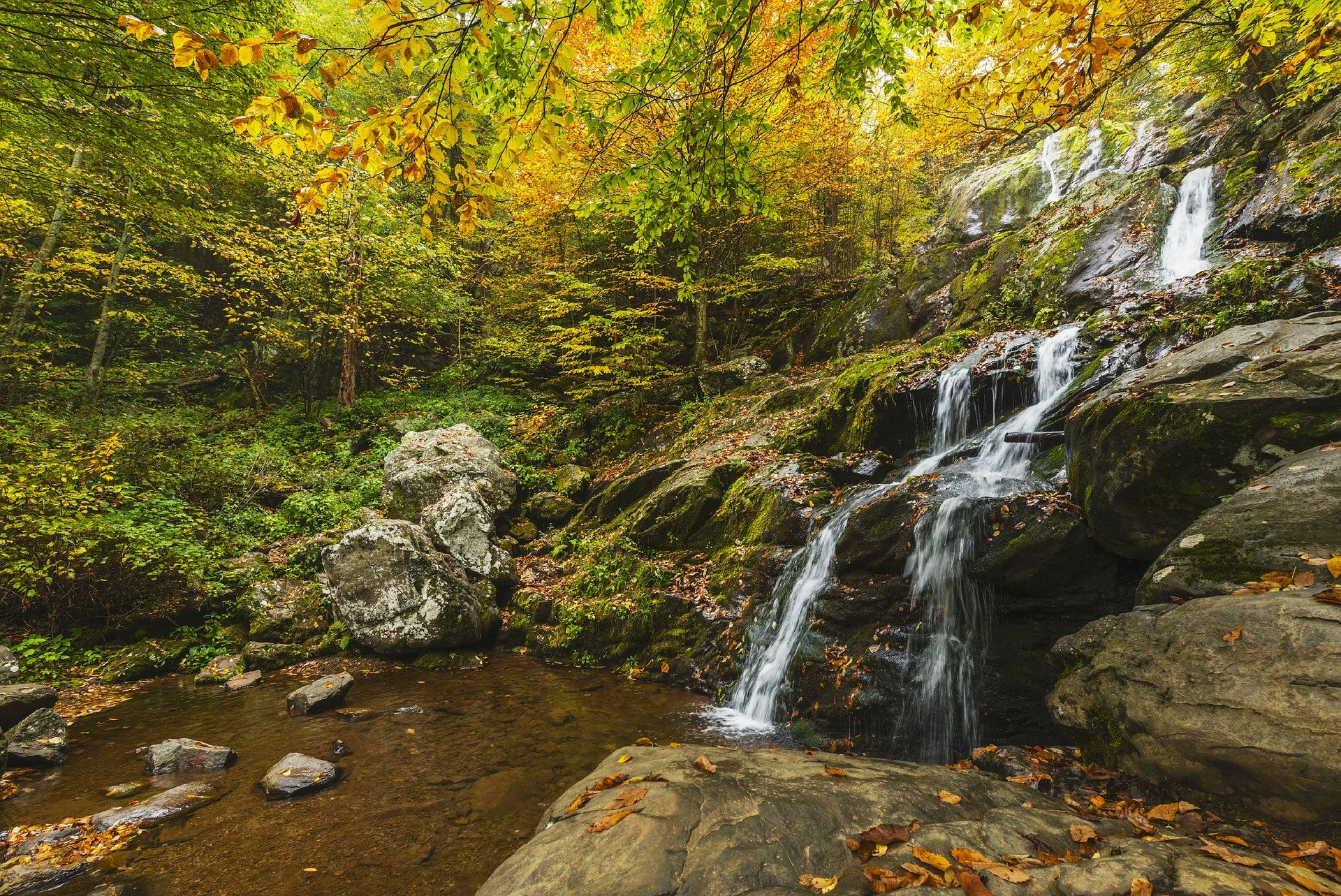 Dark Hollow Falls Autumn